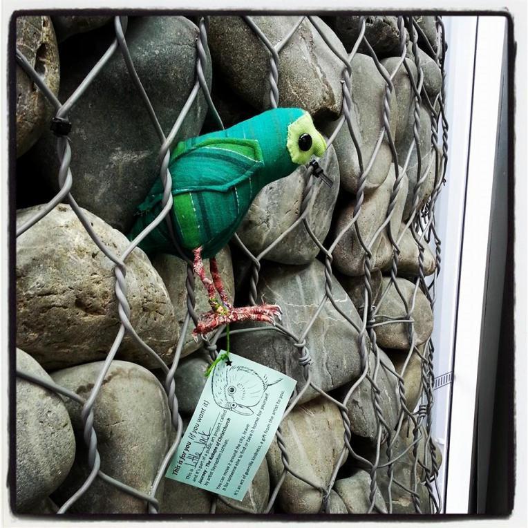 Journey the Kakapo project